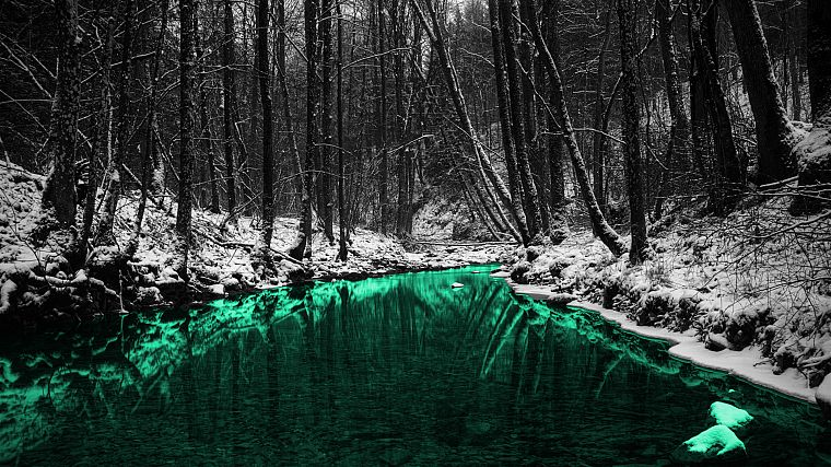 green, nature, forests, outdoors, selective coloring, rivers - desktop wallpaper