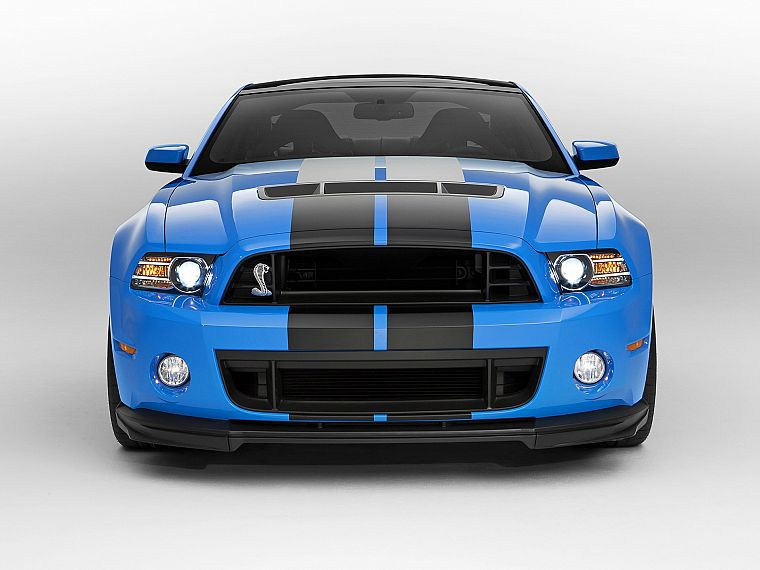 cars, studio, front, Ford Shelby, Ford Mustang Shelby GT500 - desktop wallpaper