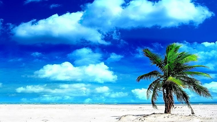 clouds, sand, islands, palm trees, beaches - desktop wallpaper