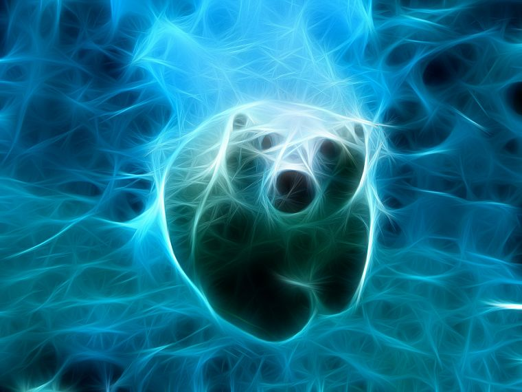 water, blue, animals, Fractalius, swimming, polar bears - desktop wallpaper