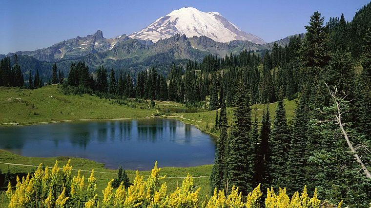 mountains, landscapes, trees, lakes, National Park, Mount Rainier, Washington State - desktop wallpaper