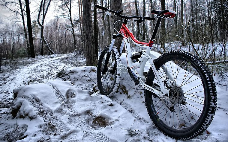 snow, bike, bicycles, woods - desktop wallpaper