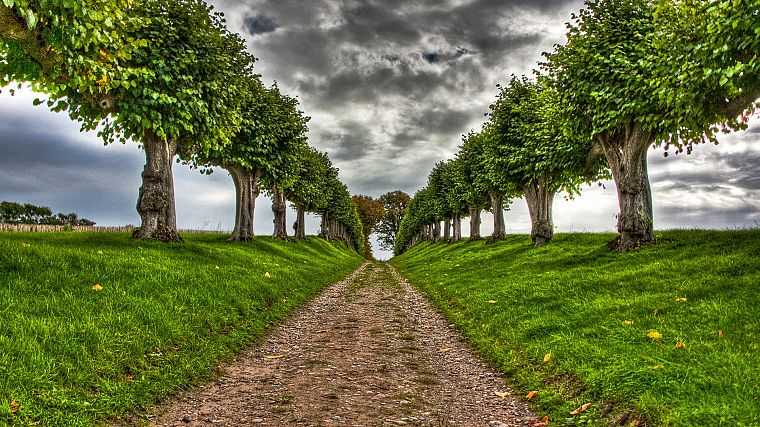 clouds, landscapes, trees, paths, HDR photography - desktop wallpaper