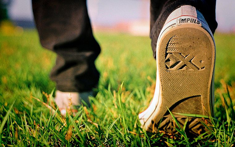 grass, shoes, sneakers - desktop wallpaper