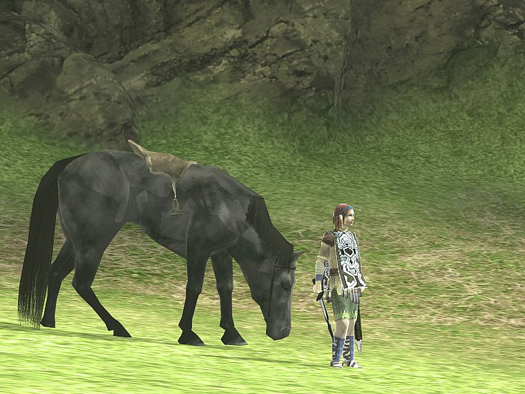 Shadow of the Colossus, Agro (Horse), Wander (Character), girls with horses - desktop wallpaper