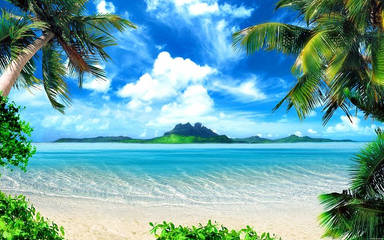 ocean, landscapes, nature, paradise, islands, palm trees, sea, beaches - desktop wallpaper