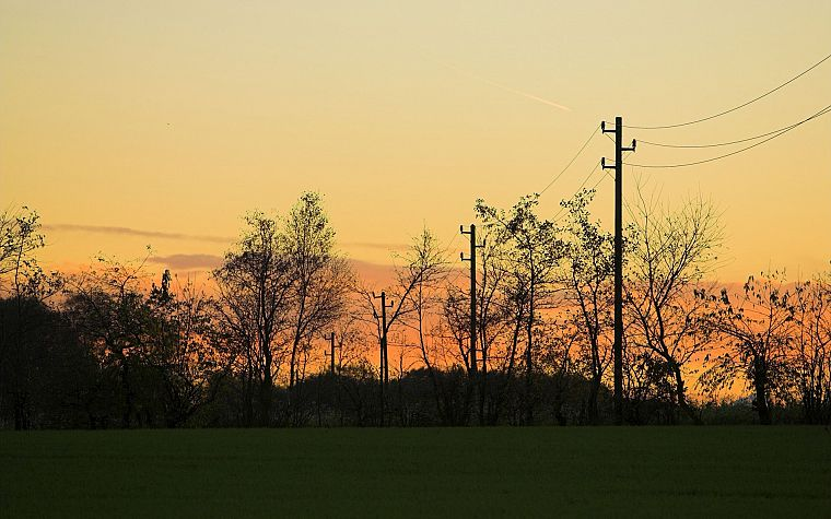 landscapes, nature, trees, power lines - desktop wallpaper
