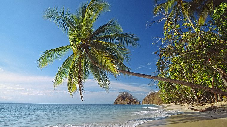 landscapes, nature, Palm Island, beaches - desktop wallpaper