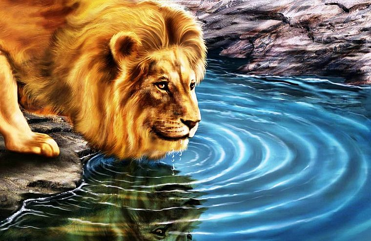 animals, artwork, lions - desktop wallpaper