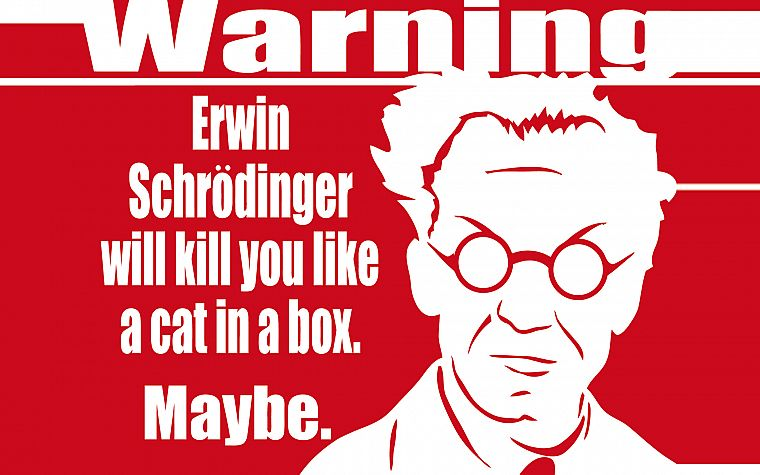 Erwin Schrödinger, simple background - desktop wallpaper