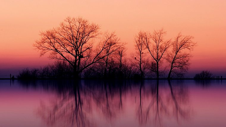 water, sunset, landscapes, nature, trees, skylines, fog, lakes, reflections - desktop wallpaper