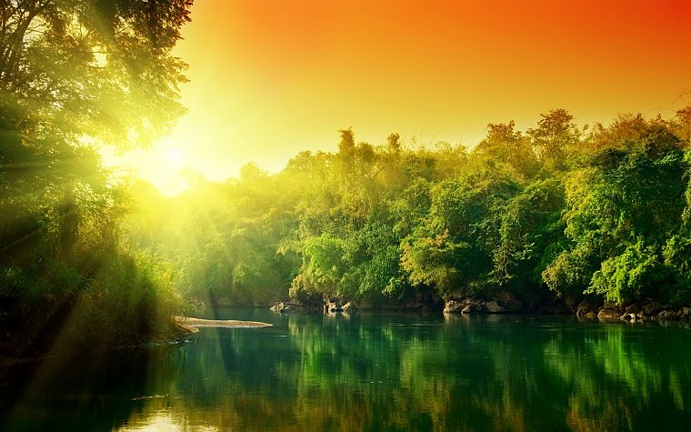 water, sunset, trees, rivers - desktop wallpaper