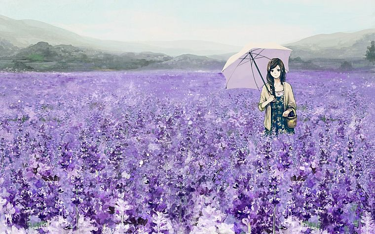 brunettes, flowers, fields, long hair, brown eyes, umbrellas, anime girls - desktop wallpaper