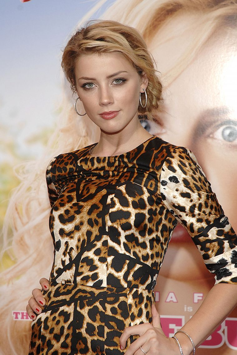 women, fashion, Amber Heard, leopard print - desktop wallpaper