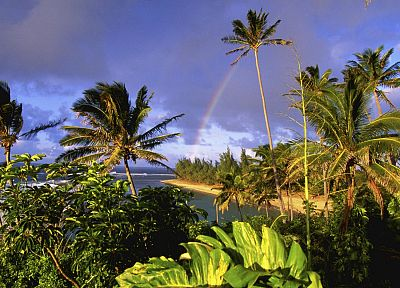 Hawaii, kauai, parks, beaches - related desktop wallpaper
