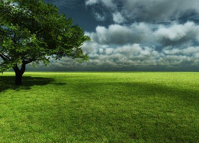 clouds, landscapes, nature, trees, meadows - related desktop wallpaper