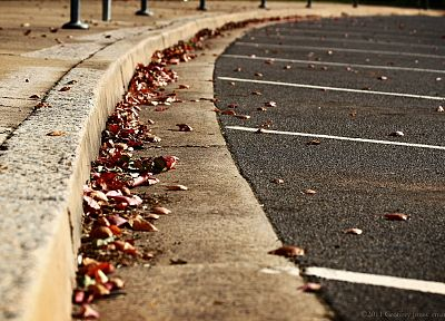 close-up, streets, hardscapes, evening, fallen leaves - random desktop wallpaper
