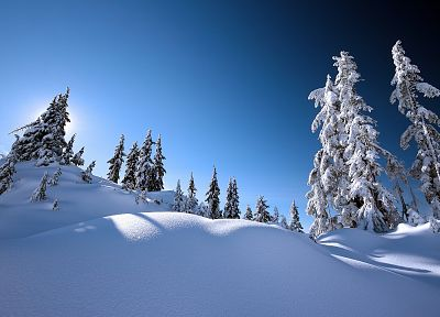landscapes, winter, snow, trees - related desktop wallpaper