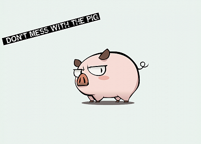 funny, mess, pigs - random desktop wallpaper