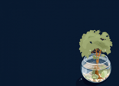 water, trees, bonsai, blue background, fish bowls - desktop wallpaper