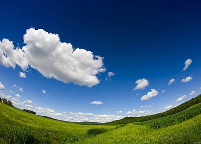 clouds, landscapes, fields, fisheye effect - random desktop wallpaper
