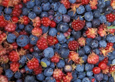 fruits, blueberries - random desktop wallpaper