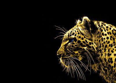 animals, Fractalius, gold, leopards, black background - desktop wallpaper