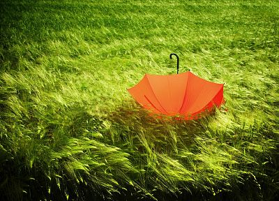 green, nature, orange, grass, umbrellas - random desktop wallpaper