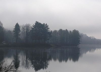 landscapes, nature, fog - related desktop wallpaper