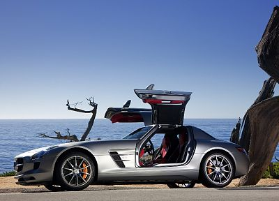 cars, vehicles, wheels, sports cars, luxury sport cars, Gull-wing door - desktop wallpaper