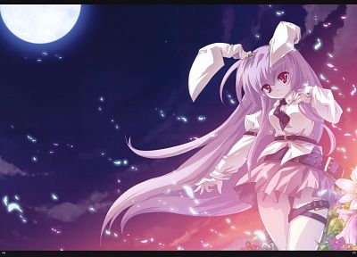 Touhou, animal ears, Reisen Udongein Inaba, anime girls - desktop wallpaper