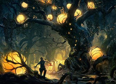 trees, lights, forests, fantasy art - desktop wallpaper