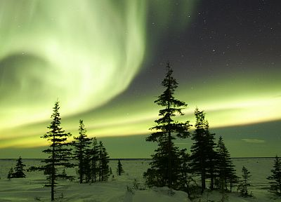 winter, aurora borealis, Canada - random desktop wallpaper