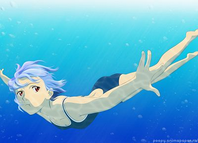 Ayanami Rei, Neon Genesis Evangelion, anime, anime girls - related desktop wallpaper