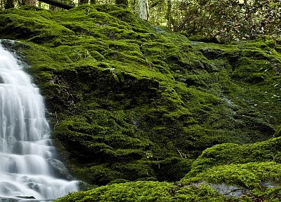 nature, forests, waterfalls, rivers - related desktop wallpaper