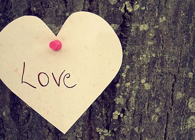 love, trees, hearts - related desktop wallpaper
