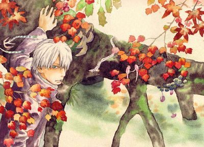 Mushishi, artwork - related desktop wallpaper
