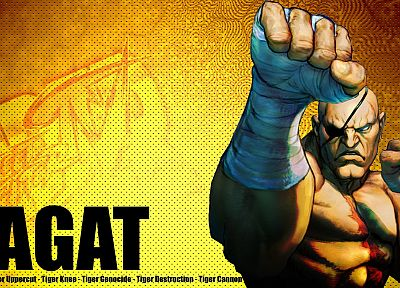 video games, Street Fighter, Sagat, artwork, Super Street Fighter IV Arcade Edition - desktop wallpaper