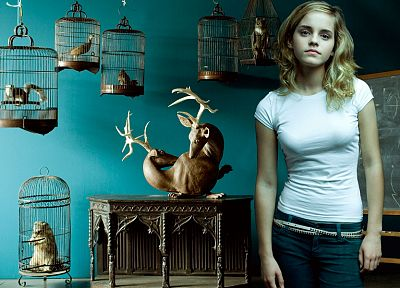 blondes, women, Emma Watson, Harry Potter, Hermione Granger - random desktop wallpaper