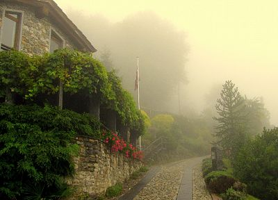 trees, fog, buildings, flags, towns, roads, villages, rivers - related desktop wallpaper