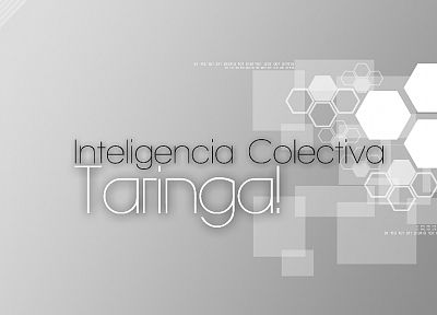 website, Taringa - random desktop wallpaper