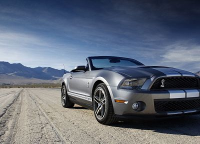 cars, vehicles, Ford Mustang, Ford Shelby - related desktop wallpaper