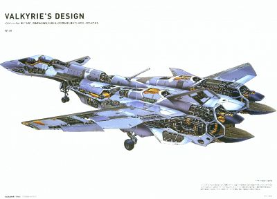 valkyrie, cutaway, jets, fighter - popular desktop wallpaper
