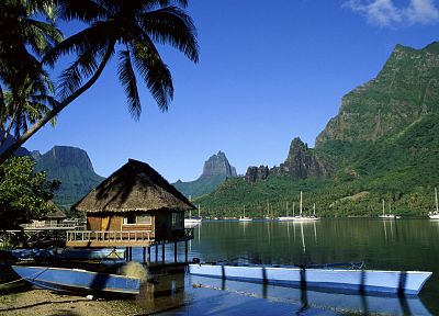cliffs, boats, French Polynesia, palm trees, Tahiti, huts, Moorea, bay, cooks - newest desktop wallpaper