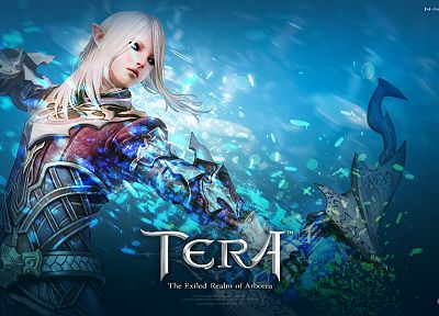 archers, Tera, MMORPG, High Elf - random desktop wallpaper
