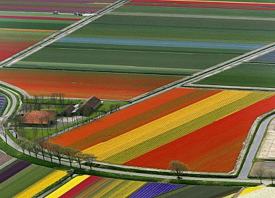 multicolor, fields, roads - random desktop wallpaper