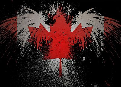 paint, hawk, Canada, Canadian flag - random desktop wallpaper