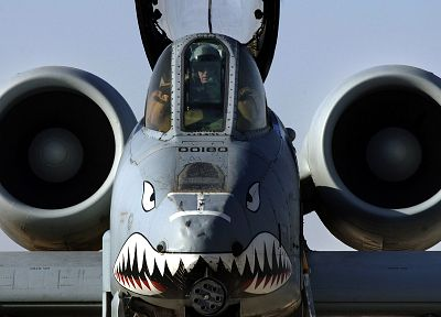 aircraft, military, A-10 Thunderbolt II, nose art - random desktop wallpaper