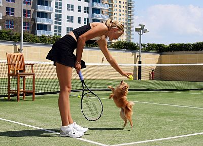 blondes, women, dogs, Maria Sharapova, tennis court, tennis racquets - desktop wallpaper