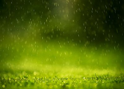 green, rain, water drops - random desktop wallpaper